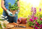 Gardens Care